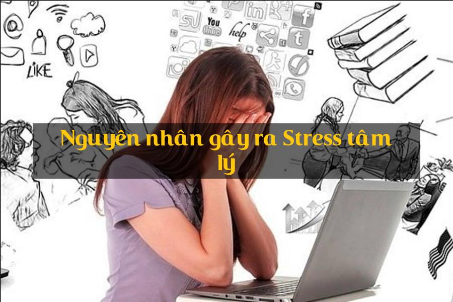 nguyên nhân gây ra stress tâm lý